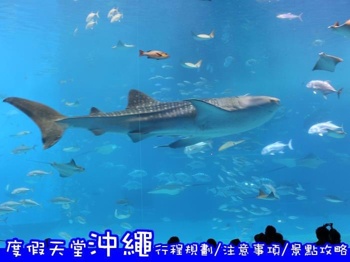 日本沖繩自由行|Okinawa本島旅遊  自駕行程規劃/注意事項/經典景點攻略